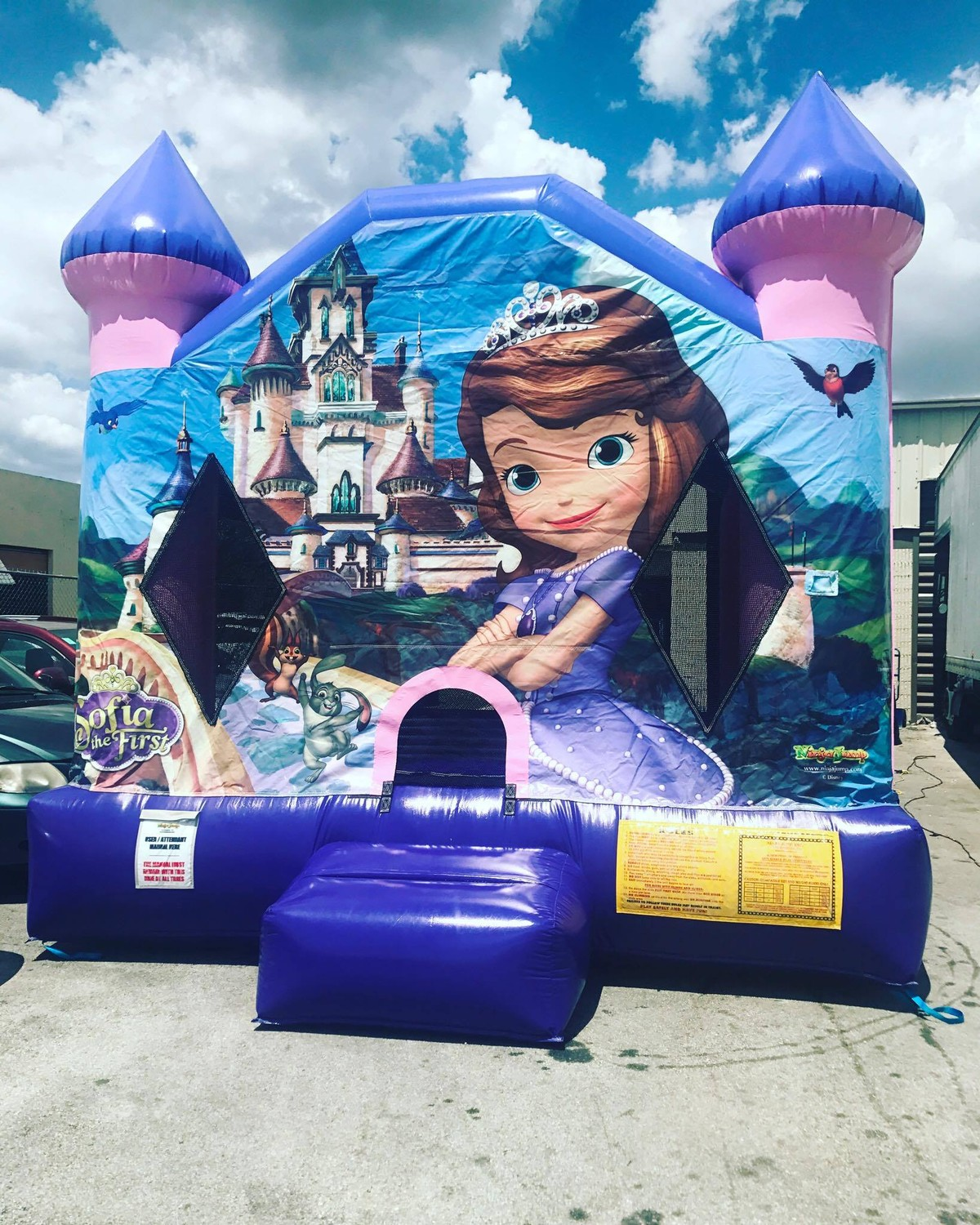 Sofia the first Bounce house Full Face
